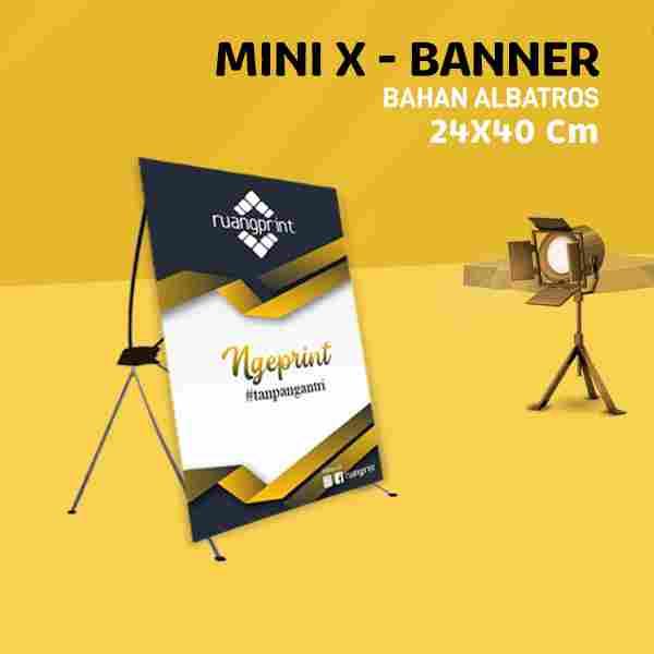 Mini X Banner 24 x 40 cm (Albatros)